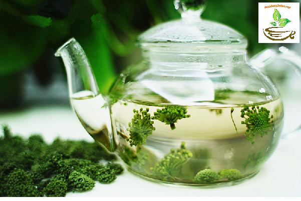 Cách dùng trà nụ hoa tam thất