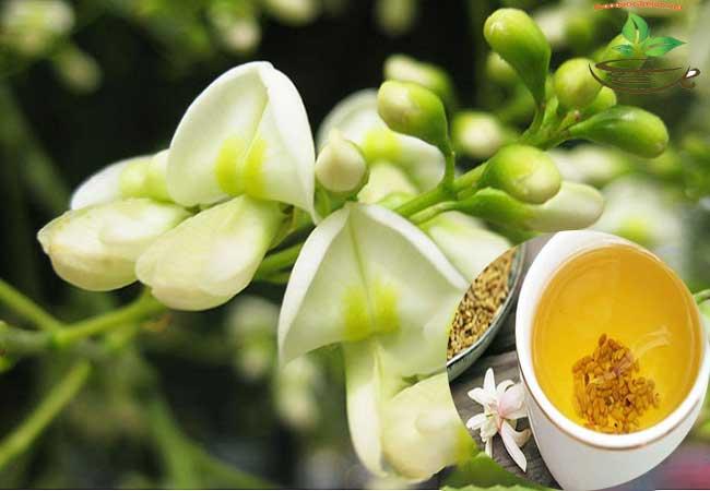 Cach sử dụng trà hoa hòe