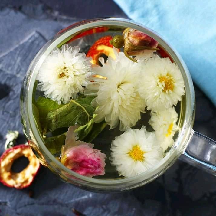 slider trà hoa cúc
