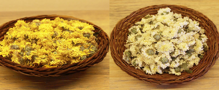 Trà hoa cúc trắng - vàng