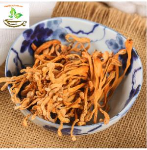 Hướng dẫn cách sử dụng nấm đông trùng hạ thảo: pha trà, ngâm mật ong, ngâm rượu, tiềm đồ, chưng yến