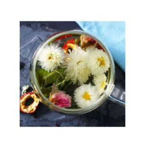 Uống trà hoa cúc mỗi ngày có tốt không
